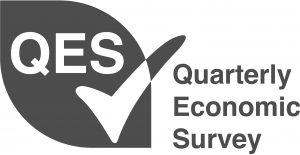 Logo-of-QES-graphic