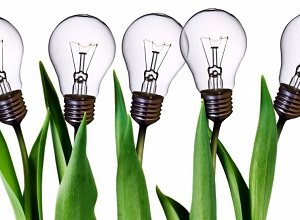 Smart-Grants-lightbulbs-300px