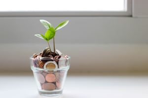 glass-with-coins-plant