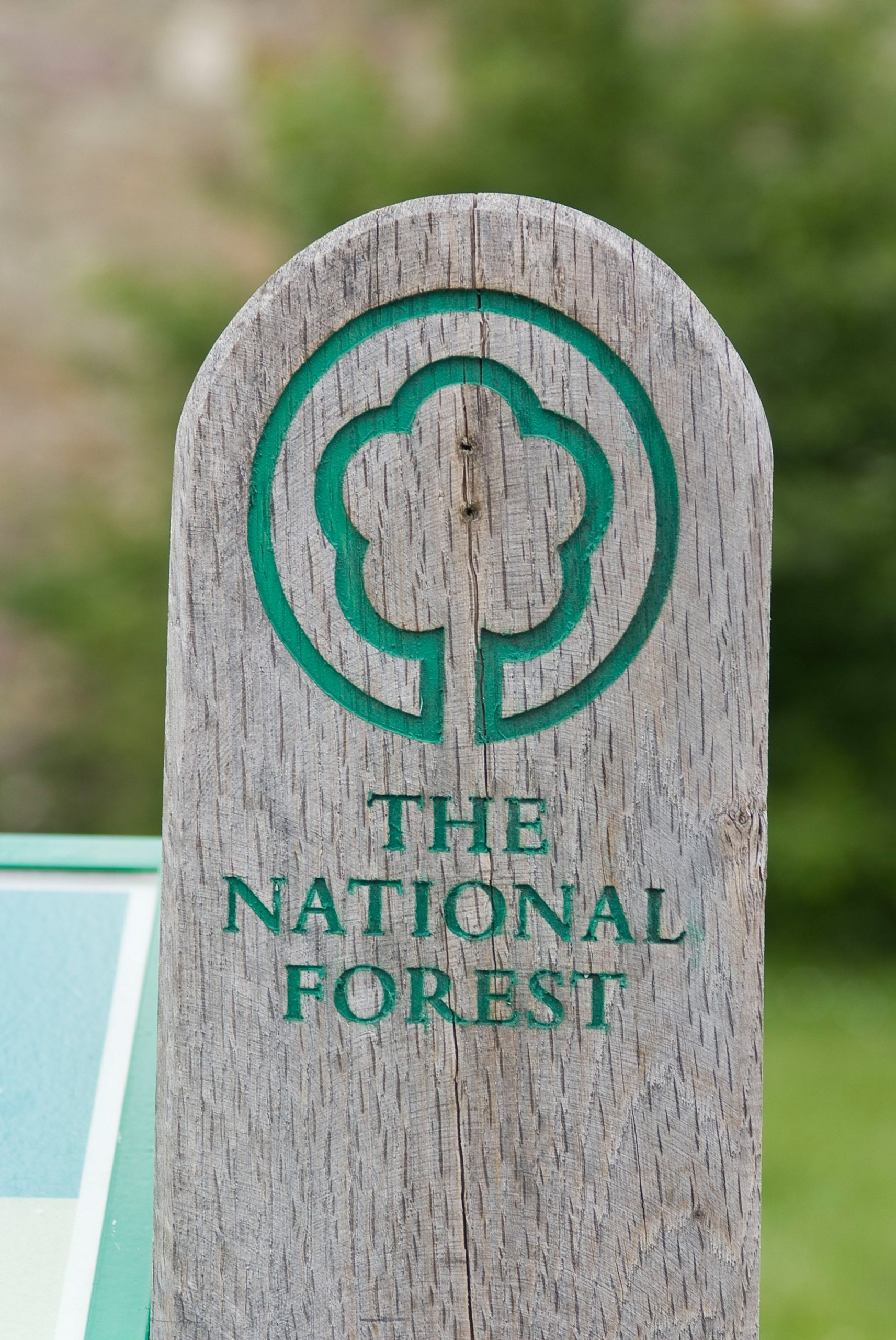 National Forest Signpost