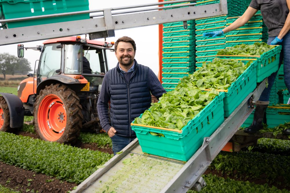 Adam-Lockwood-with-salad-crops-on-conveyor
