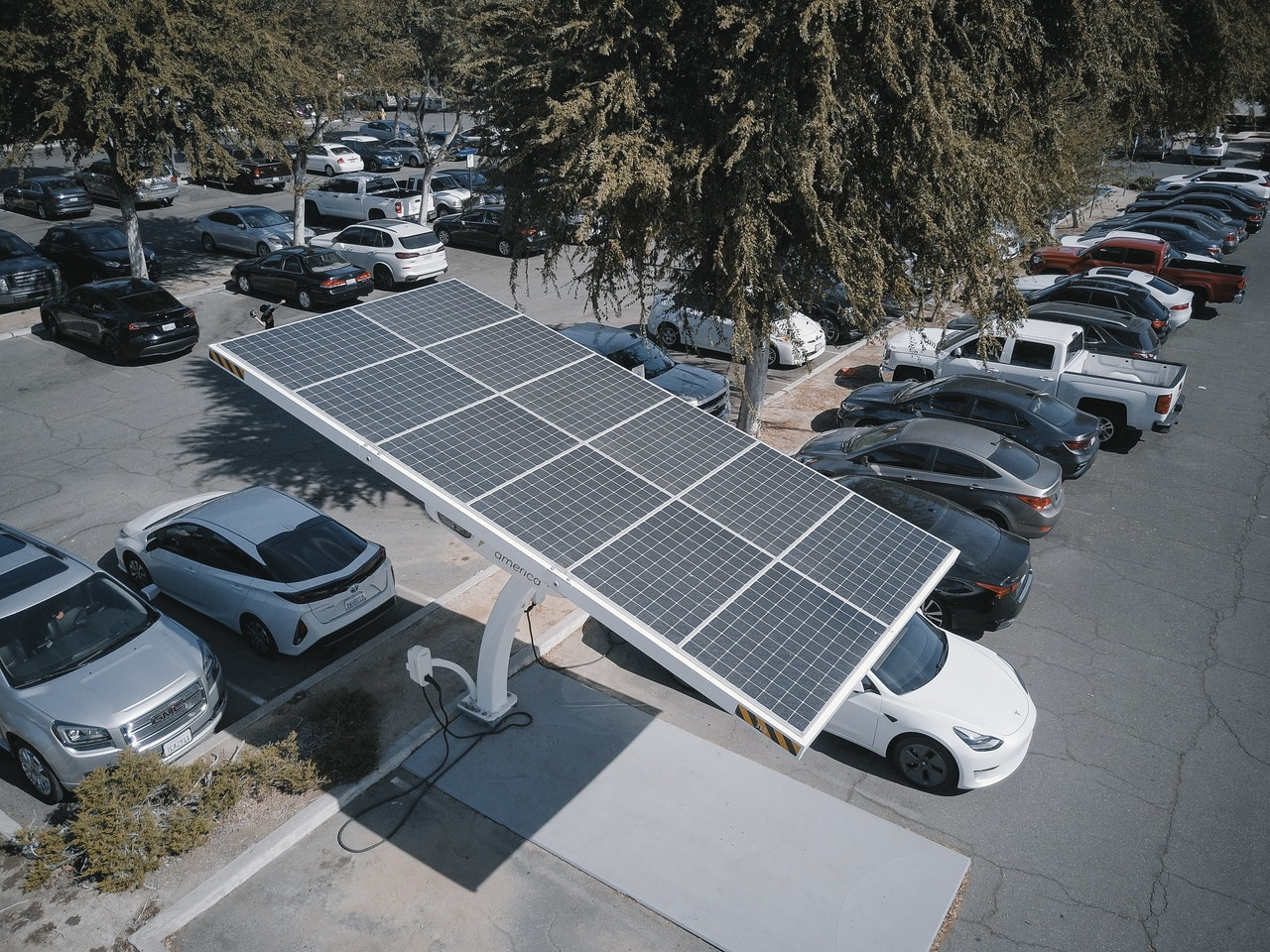 Helping your business go green